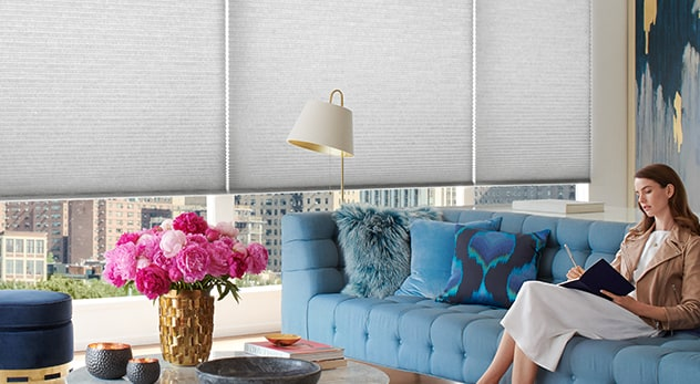Cellular Honeycomb Shades Duette Showcase